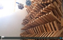 striatedwallvideo01